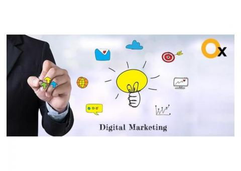 Top Digital Marketing Agency in Delhi | iBrandox™