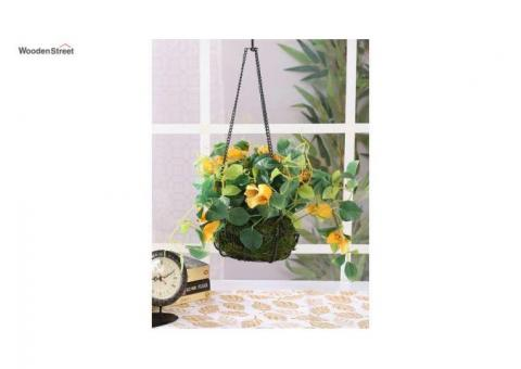 Purchase Balcony Decor Products Online at WoodenStreet