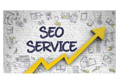 Search Engine Optimization (SEO) Service In India