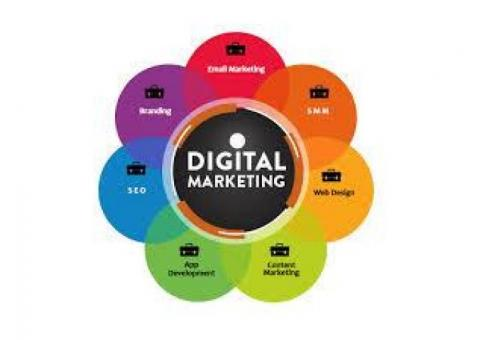 Best Digital Marketing Company in Lucknow