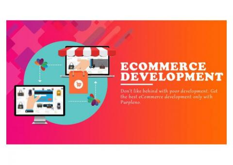 Ecommerce Website Development Company in Lucknow