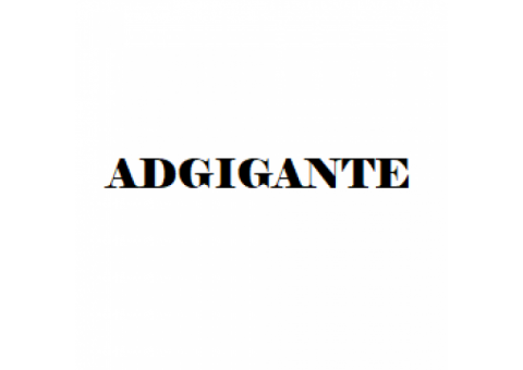 Adgigante - Website Development & Designing Agency