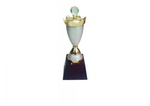Buy Wooden Awards and Mementos Online in Bhubaneswar