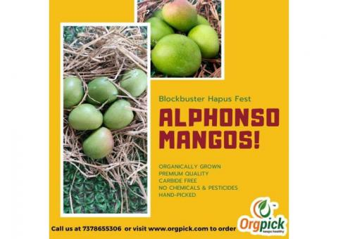 Organically Grown Hapus Aam Peti Online