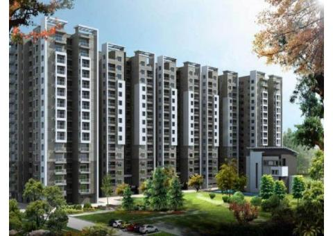 4 Interesting Facts About the Affordable Housing In Gurgaon
