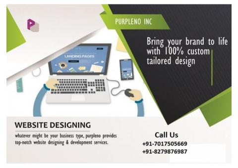 100% Satisfactions – web design and development Company In Bareilly….