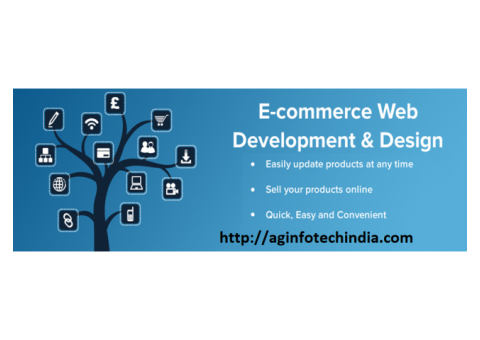 Web Design & Development Company in Bareilly