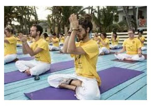 Yoga and Ayurveda tours in India
